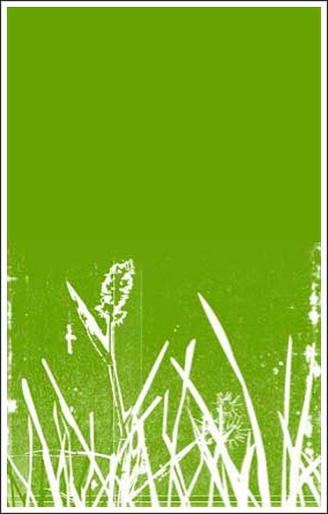 Greenwebsite